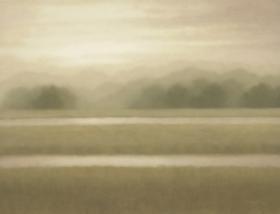 Marsh Light #1